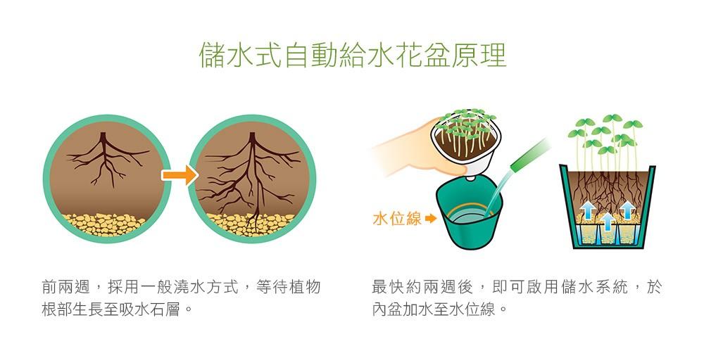 2Ustyle 風格圖悠 花盆 花器 植物 盆栽 自動給水 自動澆水盆栽