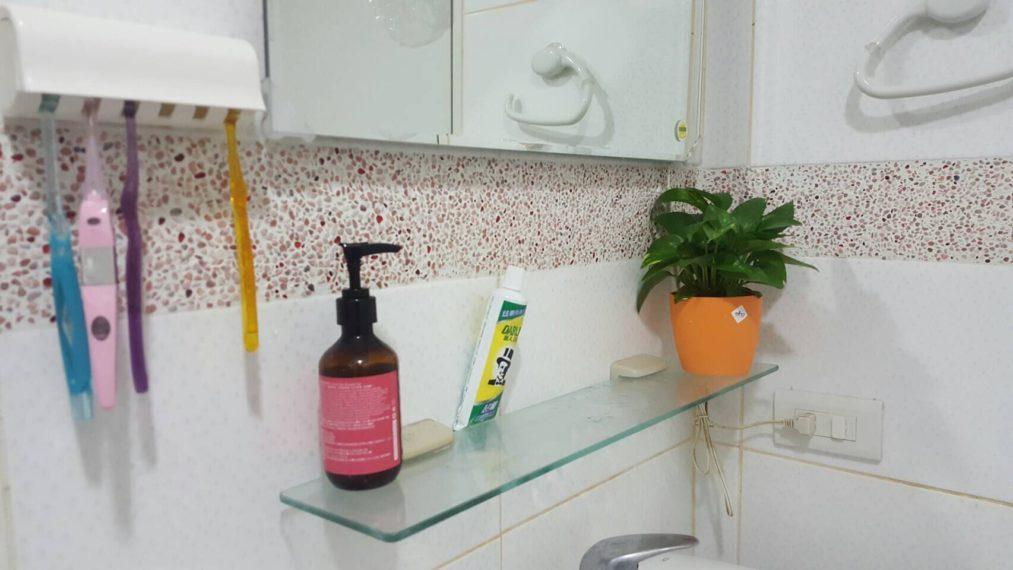 廁所盆栽,浴室盆栽