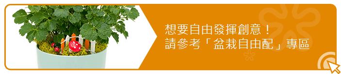 2Ustyle 風格圖悠 盆栽 植物 花器 盆栽自由配