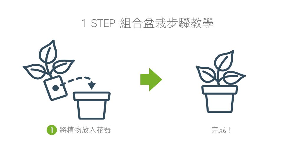 2Ustyle 風格圖悠 盆栽 植物 花器 組合盆栽步驟教學 1step