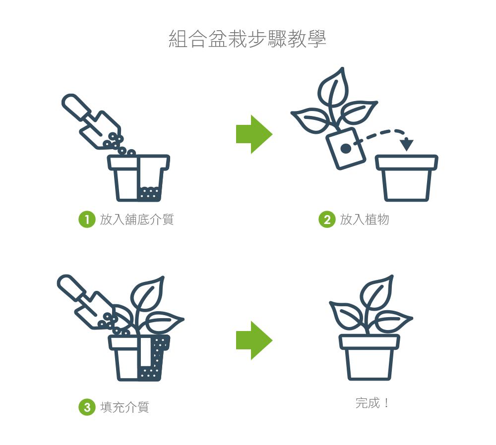 2Ustyle 風格圖悠 盆栽 植物 花器 組合盆栽步驟教學