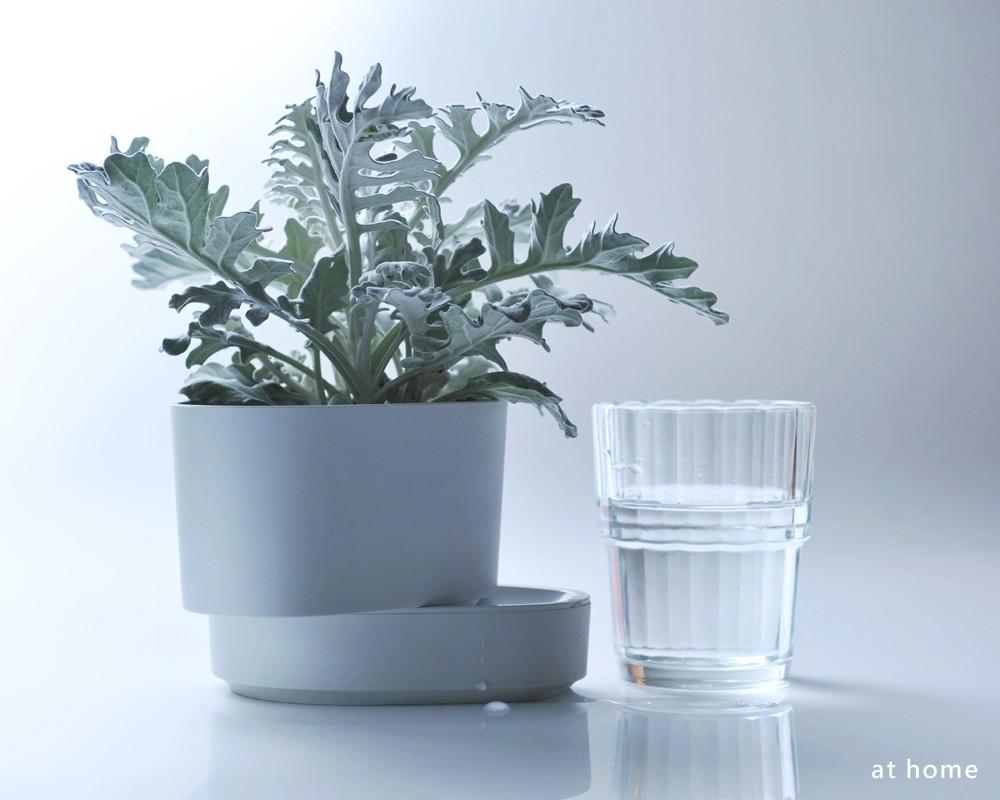 2Ustyle 風格圖悠 花盆 花器 植物 盆栽 normo 植物圓 自動給水 自動澆水