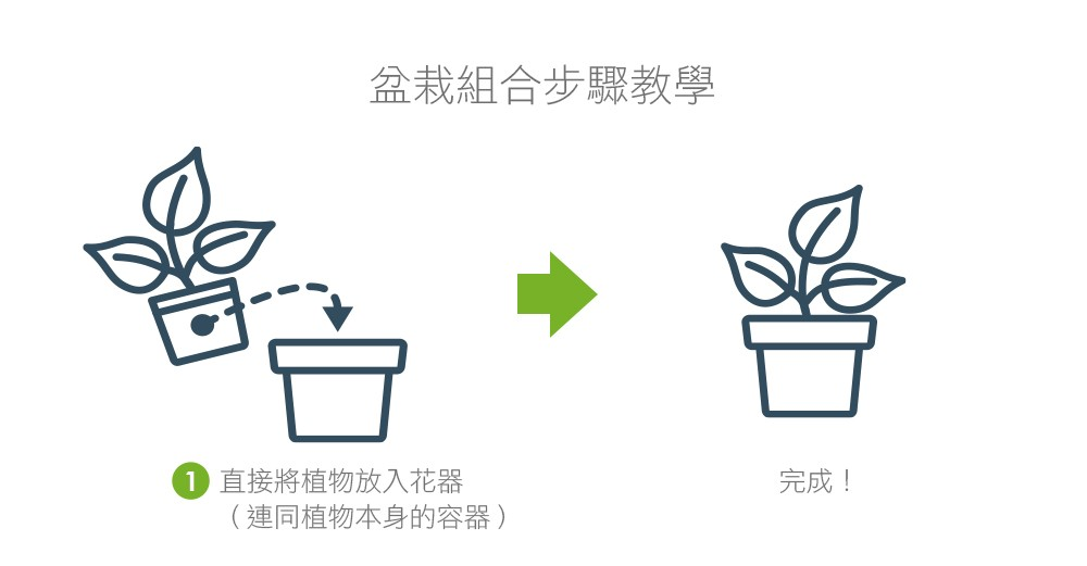 2Ustyle 風格圖悠 盆栽 植物 花器 組合盆栽步驟教學 套盆 1step