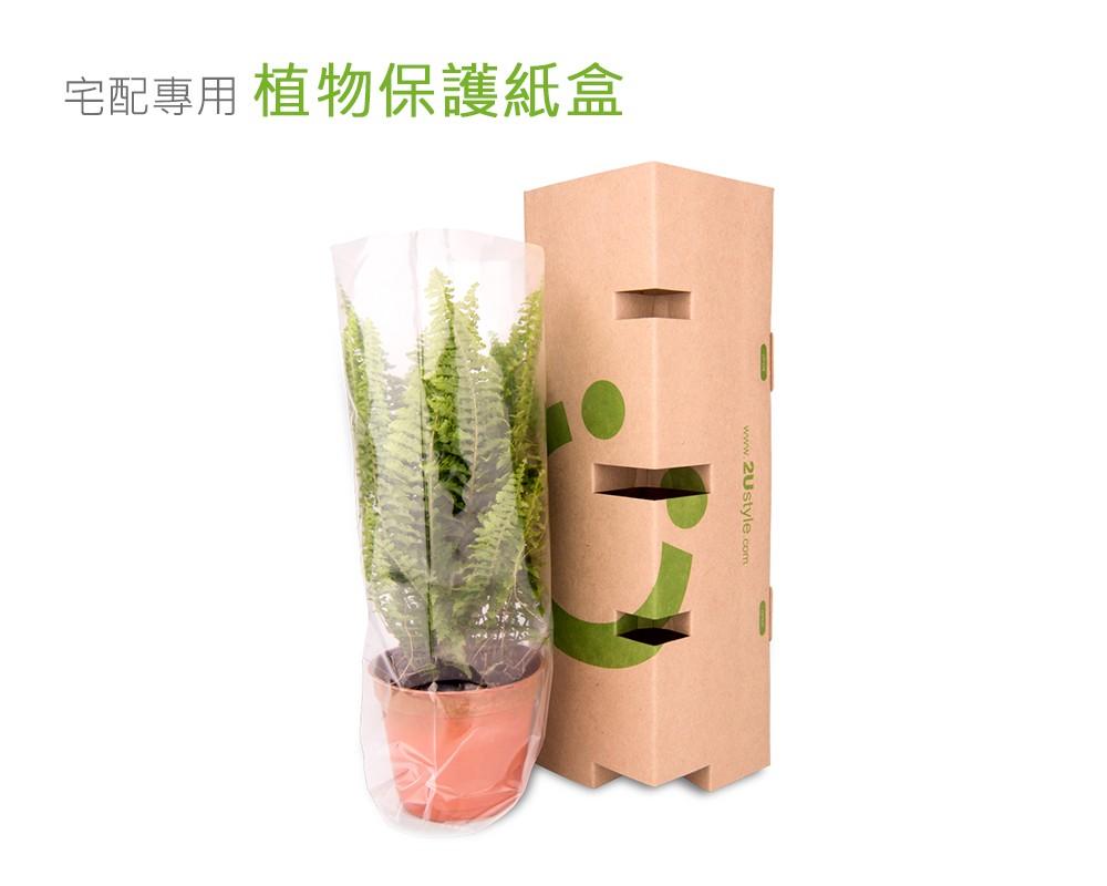 2Ustyle 風格圖悠 植物保護紙盒