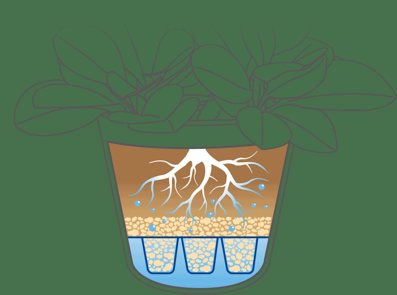 儲水盆栽.智慧澆水